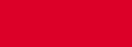 Catalana Logo (IE)